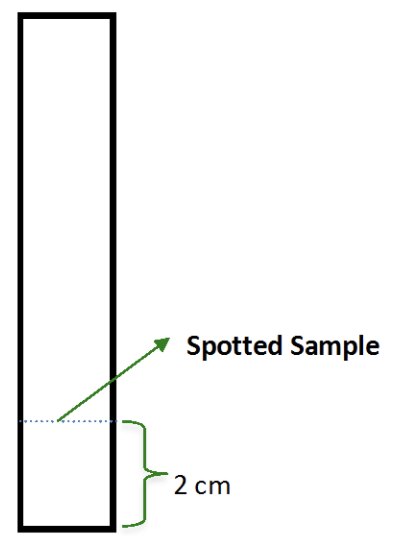 Figure 3: TLC plate representing sample applications