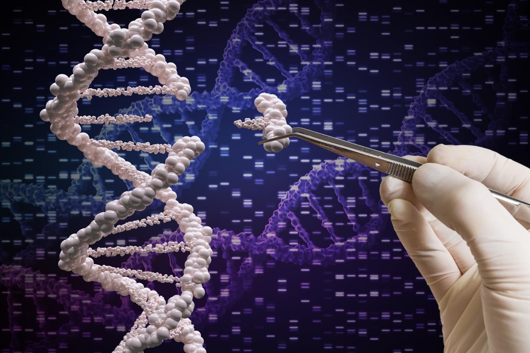 Molecular Tools in Genomics