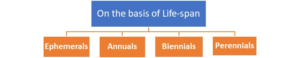 Figure 16. Types of plants based of their life span