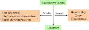 Figure 1. Diagrammatic Representation of Process of Radioactivity