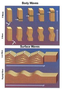 Figure 5. Types and movement of seismic waves