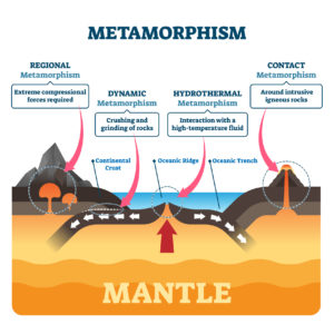 Figure 6. Metamorphism (regional, dynamic, hydrothermal and contact forces)