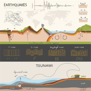 Figure 4. Types of seismic waves