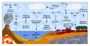 Figure 5. Sulfur cycle