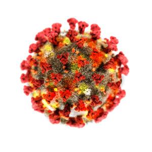 Figure 2. A coronavirus