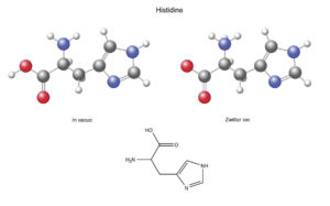Figure 4. Histidine (His): chemical structural formula and models